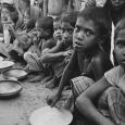 Věnujte neobvyklý dárek, který pomůže těm nejchudším v Africe. V tomto článku poradíme, jak na to.