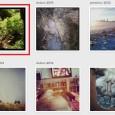 Možnosti, jak si můžete vložit obrázky, galerie a tlačítka z Instagramu do webových stránek nebo blogu.