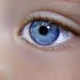 Kruhy pod očima občas trápí každého, především při nedostatku spánku, únavě nebo stresu. Můžete je však jednoduše zakrýt a opět váš vzhled rozjasnit. Zkuste některý z následujících tipů. Použijte krém […]