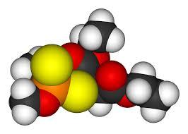 vitamin a c e