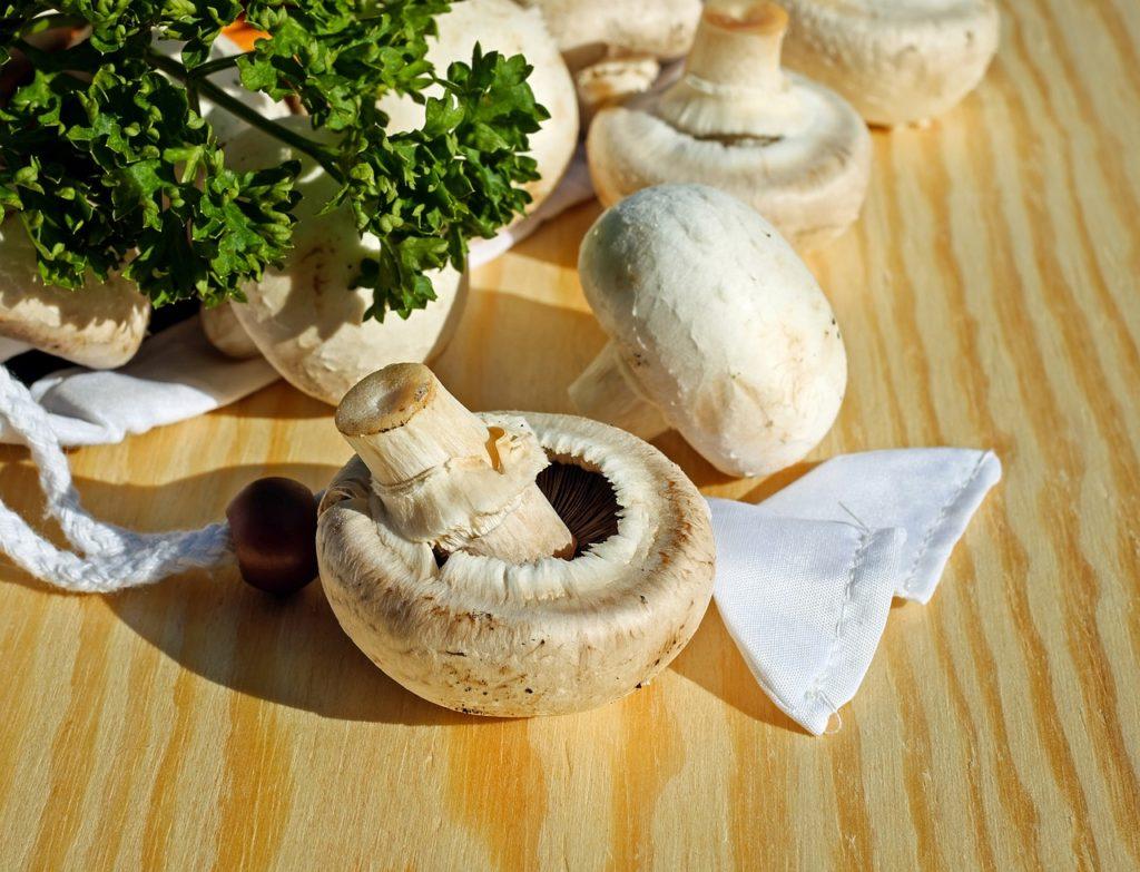 Jak zamrazit houby
