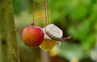 Jak zavařit jablka